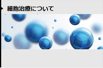 細胞治療について